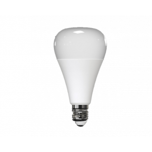 BULB E27 Connected LED E27 bulb
